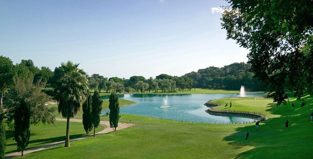 Tenga la mejor experiencia de golf posible en la Costa del Sol