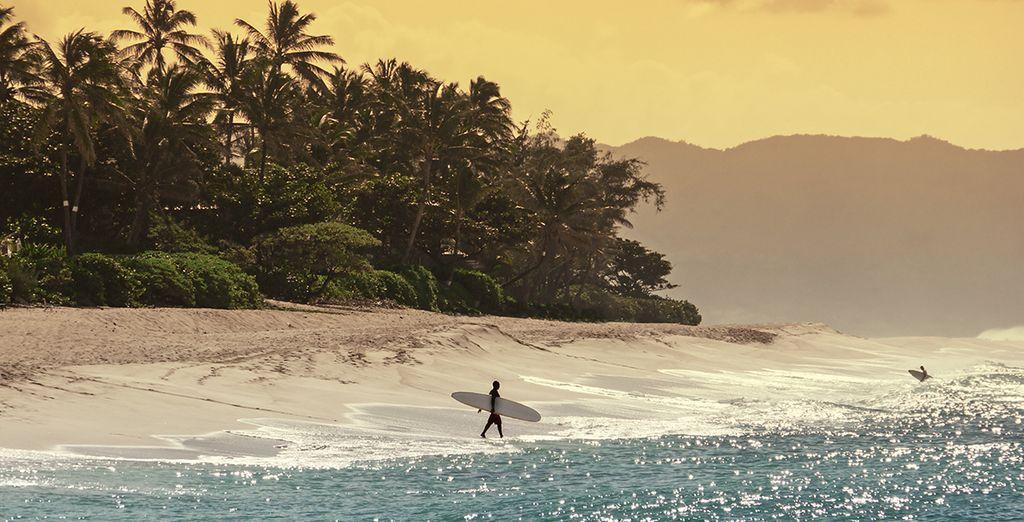 Conocerás la historia de Hawái y sus asombrosas maravillas naturales