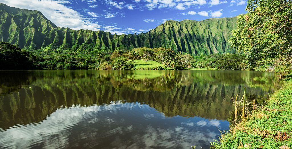 Hawaii, la siguiente parada en tu viaje