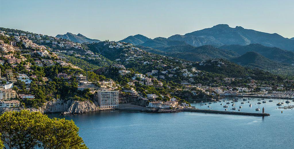 Tus vacaciones perfectas en la isla