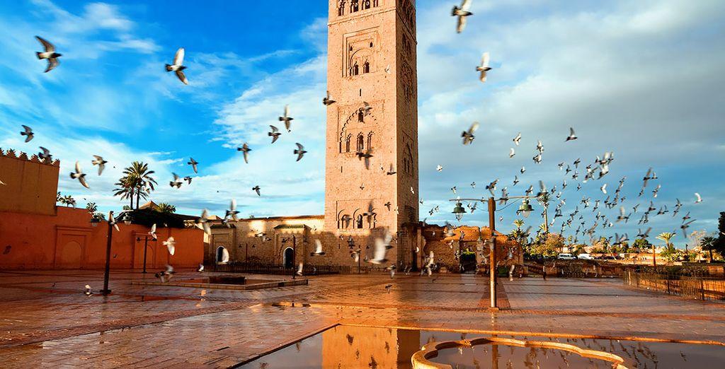 ¿Estás listo para conocer Marrakech?