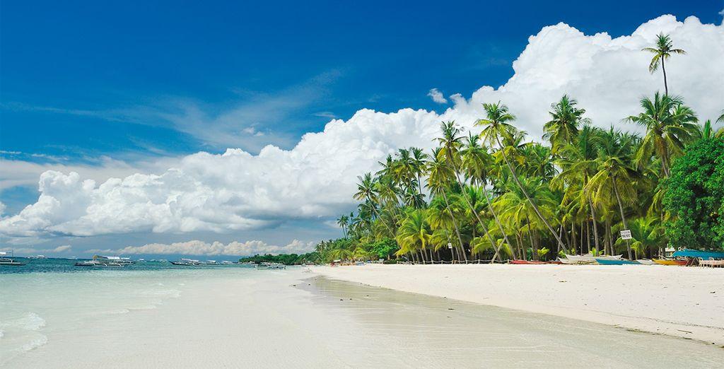 Este año viajarás al paraíso