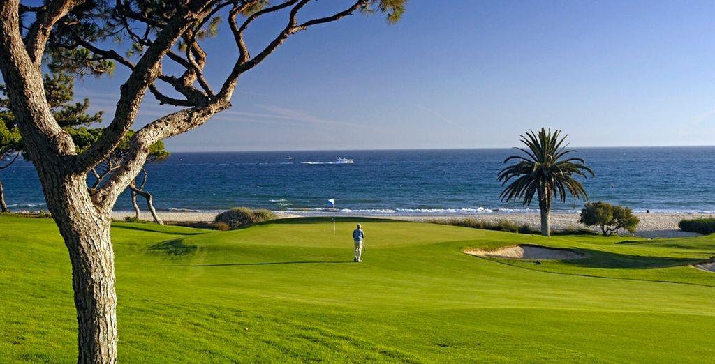 Si eres amante del golf... ¡practica tu swing!