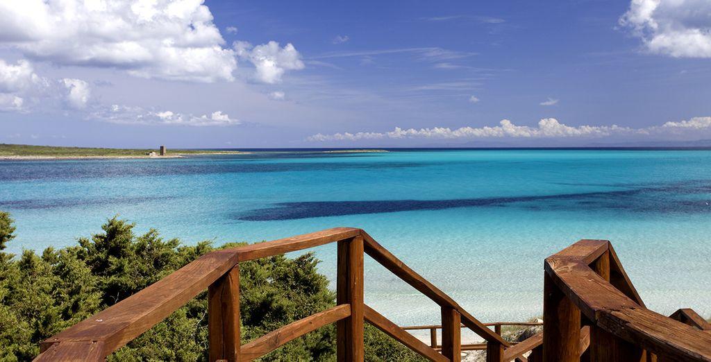 Visita la isla de la Maddalena y maravíllate con sus fantásticas playas