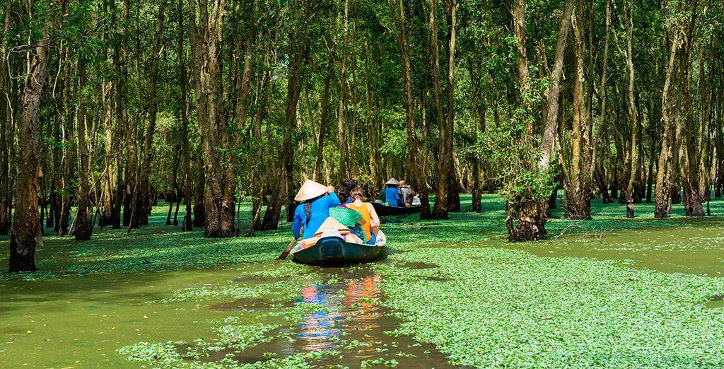 Descubre el Delta de Mekong y su naturaleza