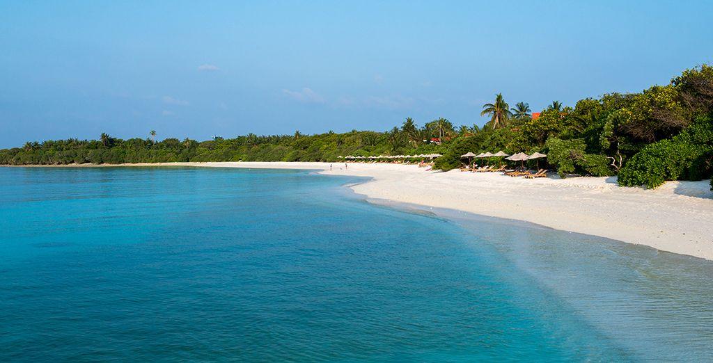 Descansa en la playa privada