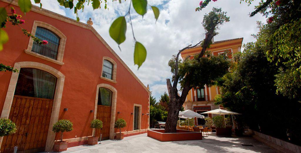 Se encuentra ubicado en la mejor zona comercial y de bodegas de Jerez de la Frontera
