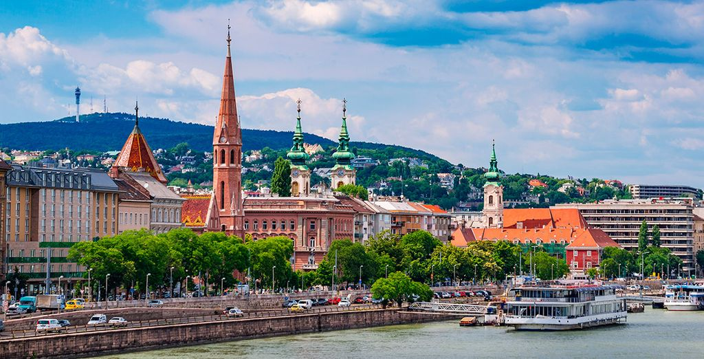 Observa el Danubio a su paso por la ciudad