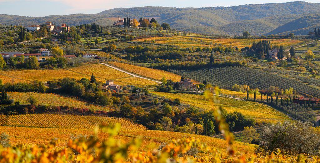 La Piazzetta ofrece vistas a las colinas de la Toscana