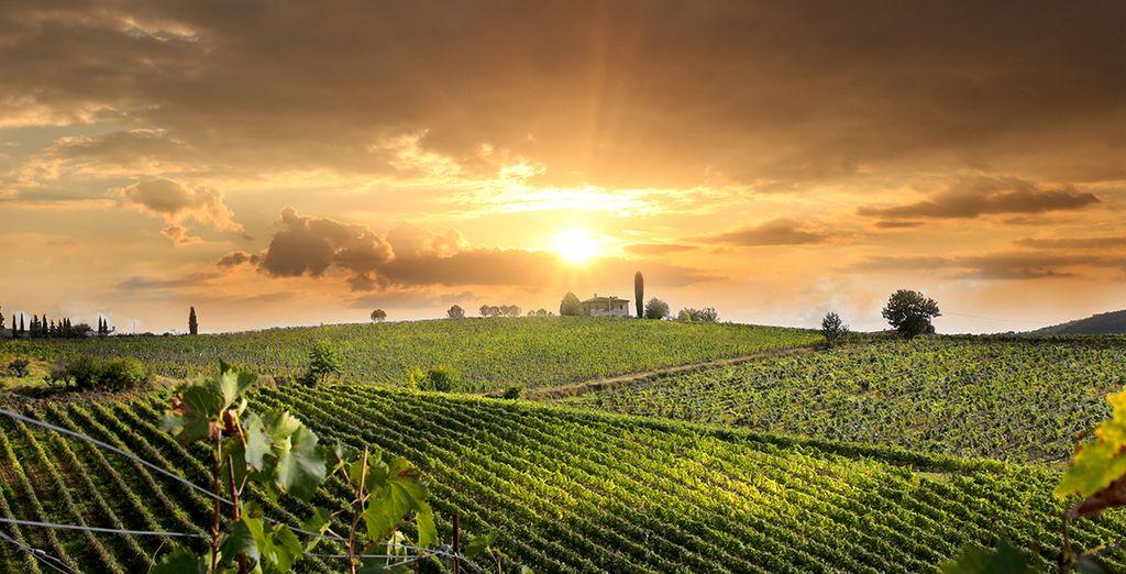 En el corazón de la Toscana, el lugar estratégico para visitar a Arezzo, Siena y Florencia