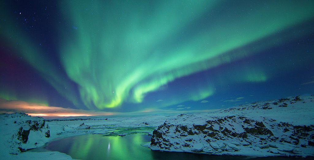 En tu hotel, puedes solicitar el servicio de alerta para ver auroras boreales fascinantes