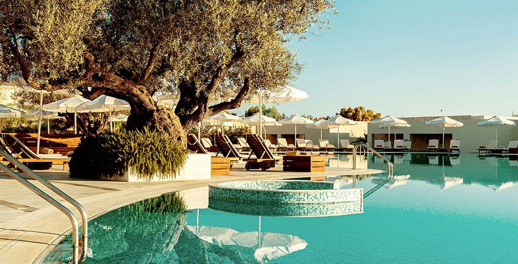 Túmbate a orillas de la piscina de Sentido Port Royal Villas & Spa 5*