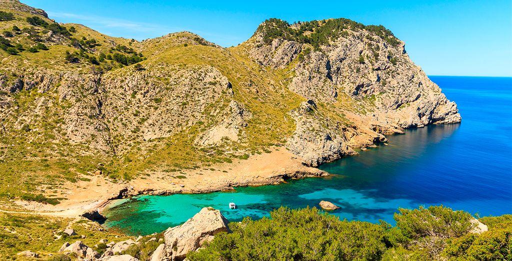 Una isla llena de naturaleza. ¡Mallorca te espera!