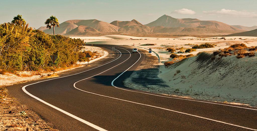 Aventúrate y siente la energía de Fuerteventura