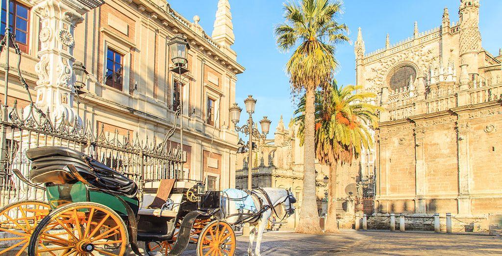 Tu hotel tiene una ubicación ideal en el centro histórico