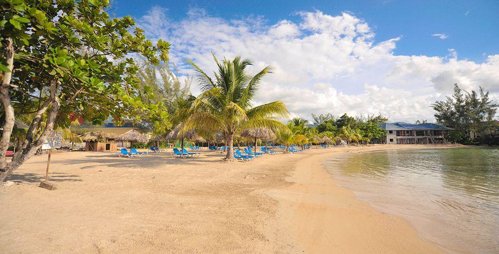Siente la esencia caribeña en las playas de Jamaica