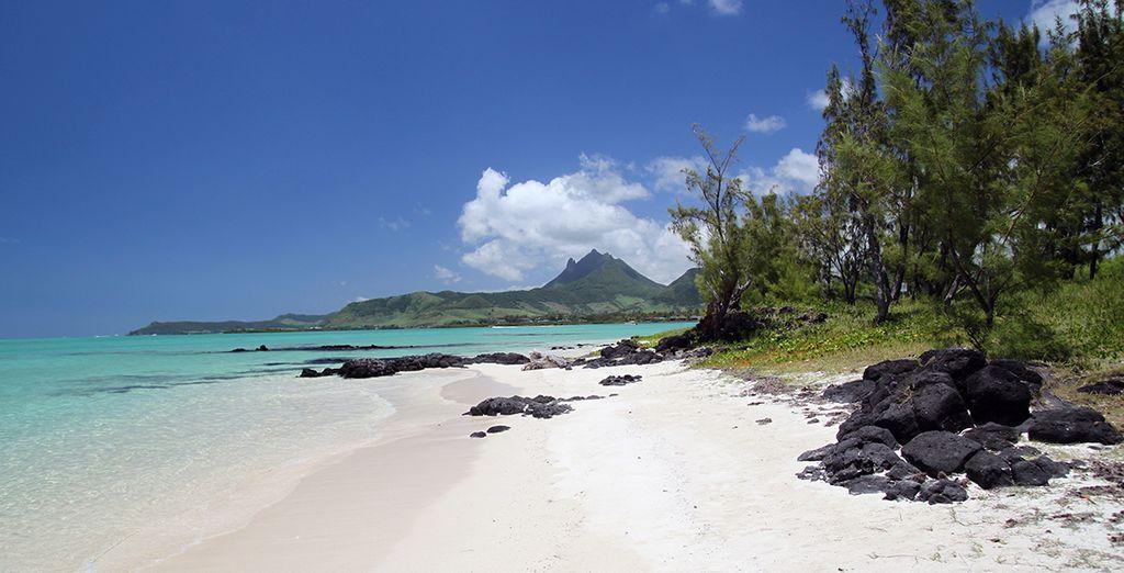 Disfruta de una ubicación privilegiada en la isla