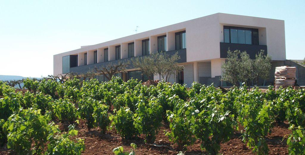 Empápate de la cultura del vino en este fantástico hotel diseñado por David Delfín
