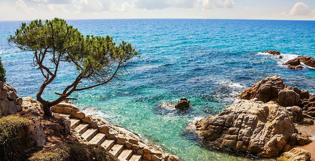Disfruta de tus vacaciones en la Costa Brava en el Hotel Pinar del Mar