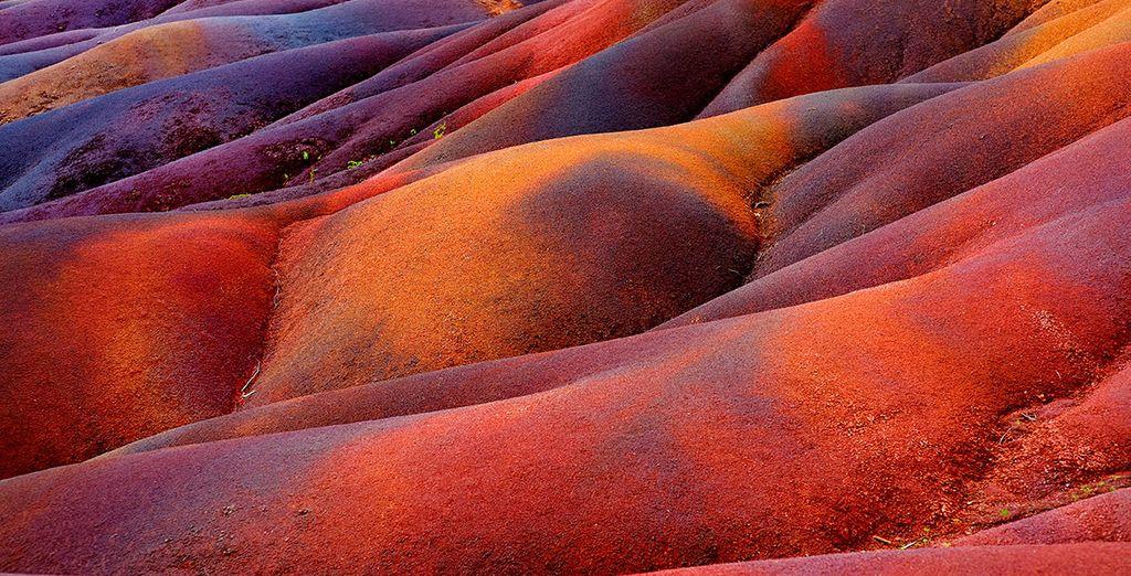 Alegría y emoción en sus coloridas tierras