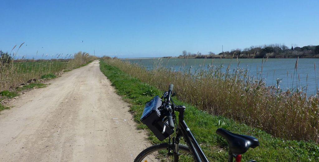 Puedes pasear en bicicleta por los alrededores