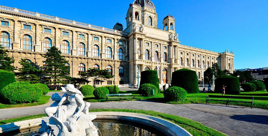 Visita el museo de Viena