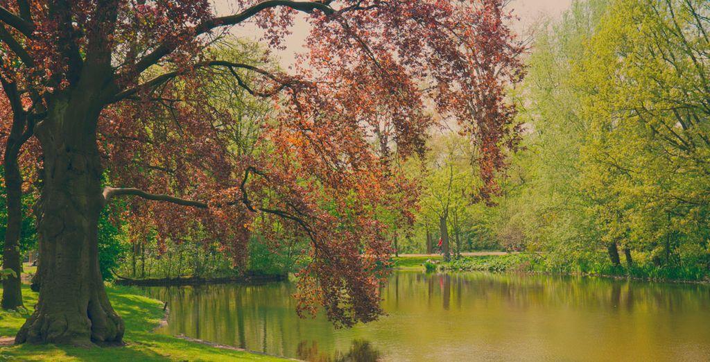 Y no olvides visitar el Vondelpark