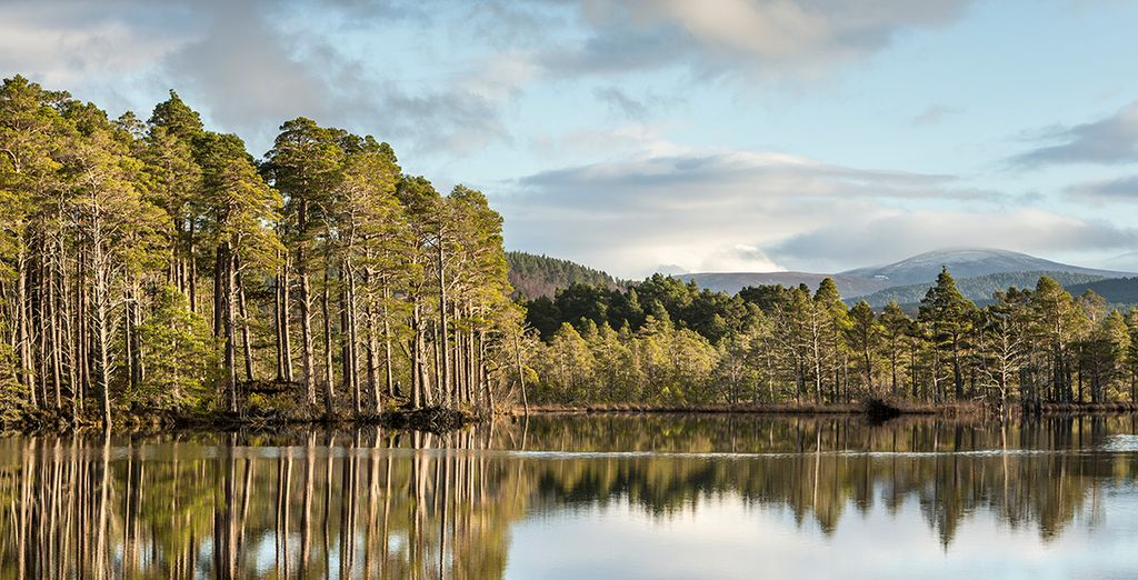 Loch Mallachie en Cairngorms