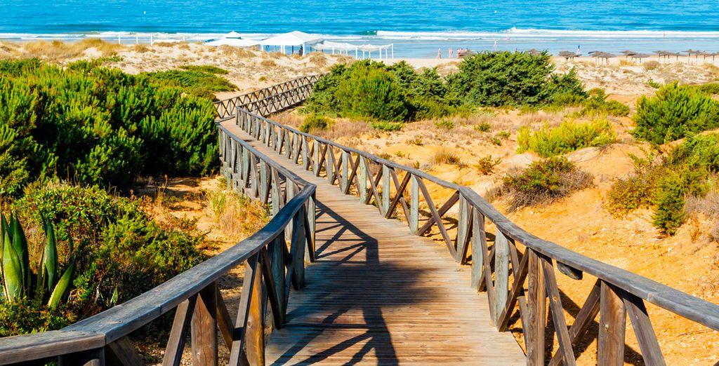Emprende el camino a tus vacaciones perfectas