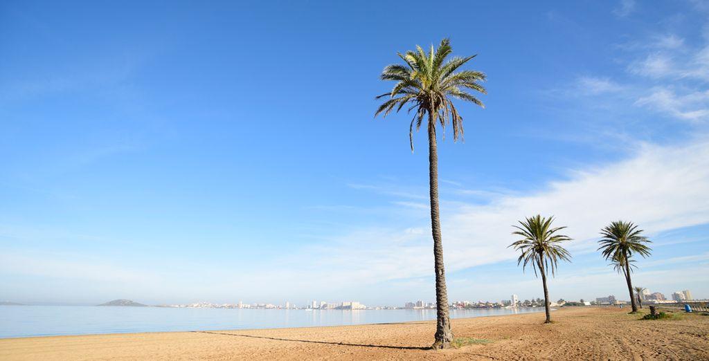 Consejos guía de viaje Murcia
