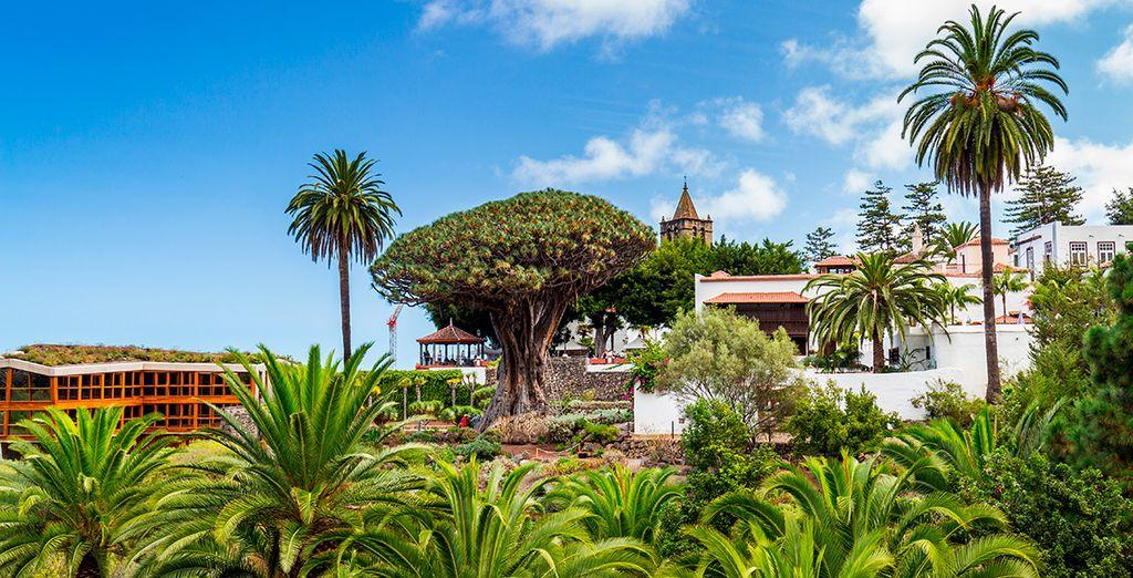 Vacaciones vuelo + hotel Tenerife Canarias