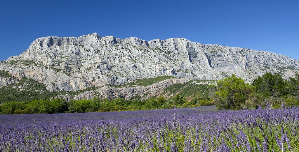 Golden Tulip Aix-en-Provence 4*