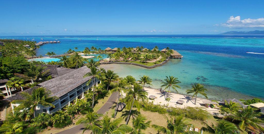 Combinado Islas de la Sociedad y Tuamotu