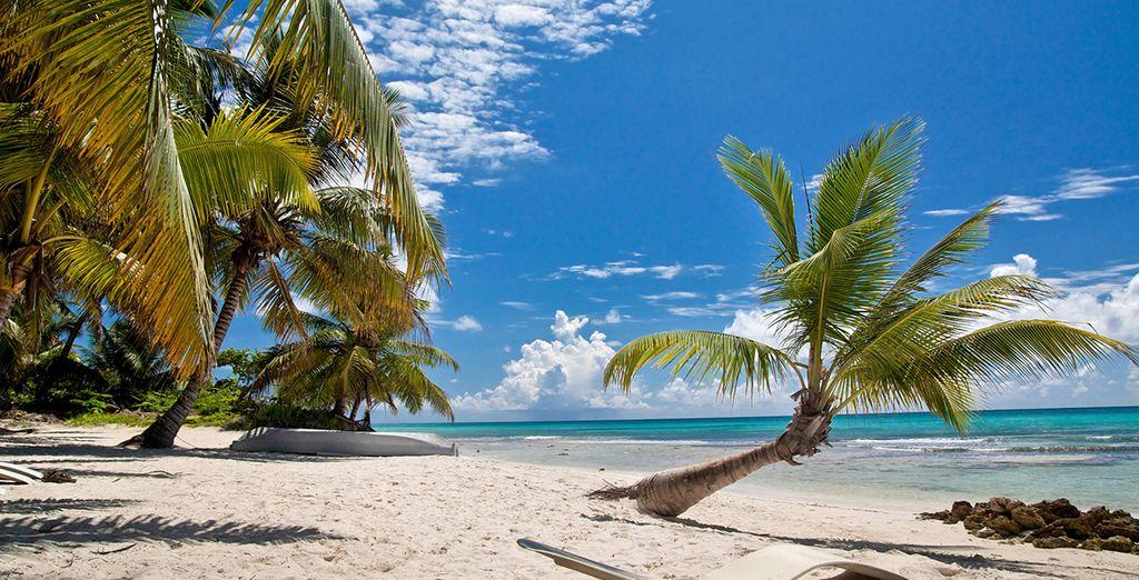 Disfrute de las Islas Bahamas