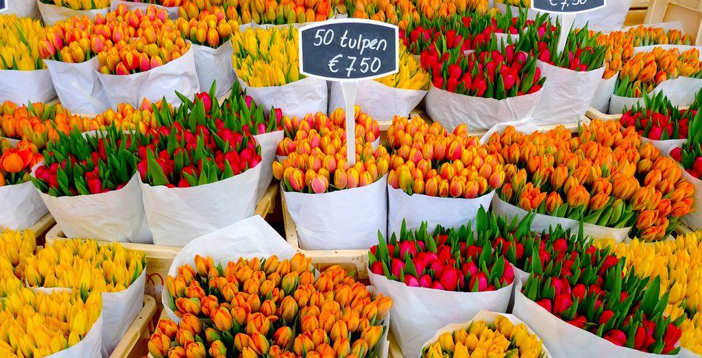 Visite los coloridos y originales mercados