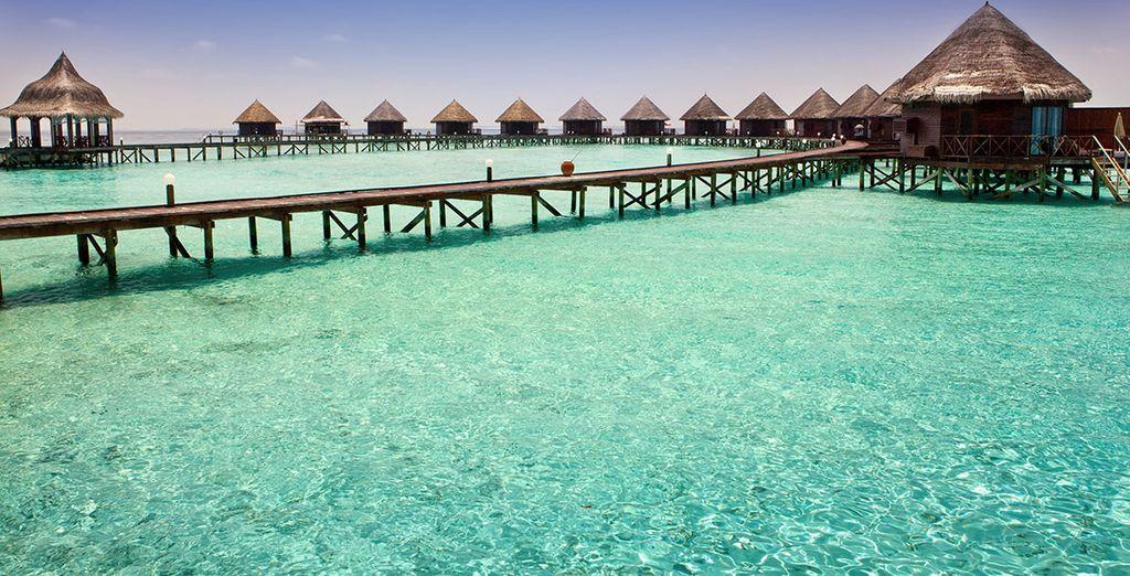 Pondrá rumbo hacia la segunda parte de su viaje: una estadía de relax bañada por las playas de las Maldivas