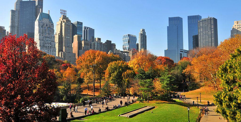 Central Park es el pulmón de la ciudad