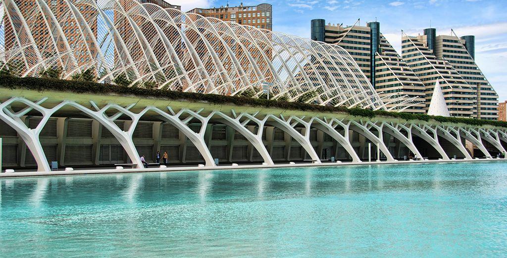 Valencia, una cuidad con mucho que ofrecerle