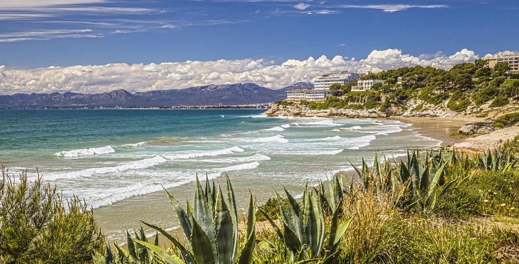 Disfrute de preciosas playas...