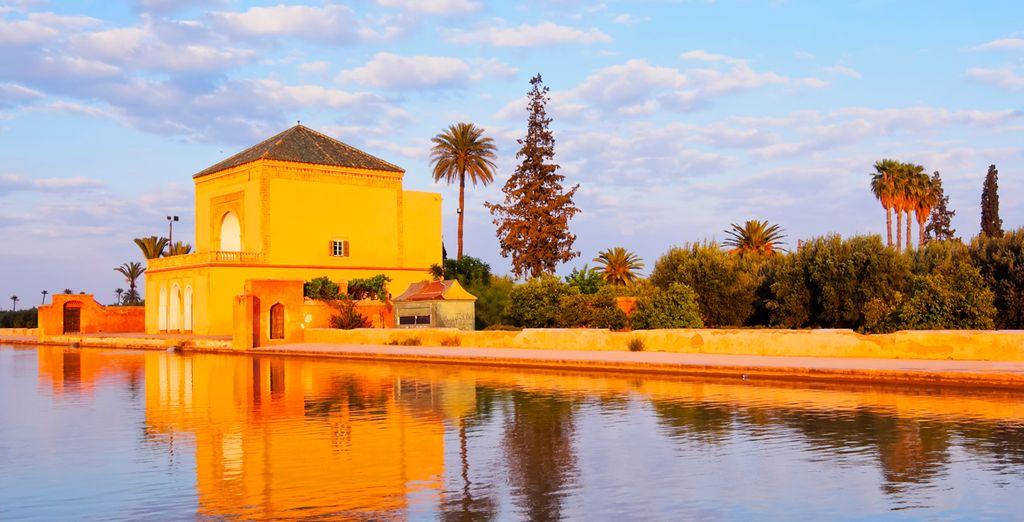 Visite mezquitas y los zocos típicos de la zona