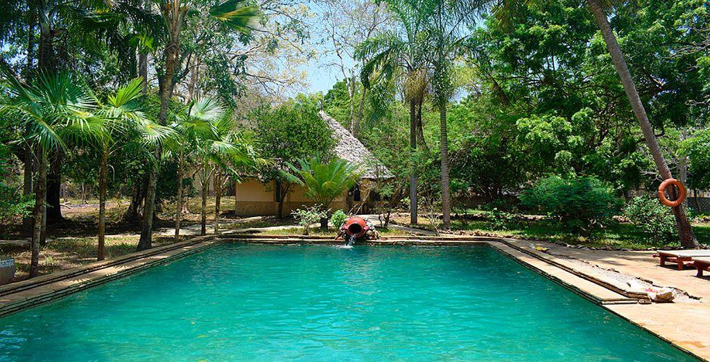 Sumérgete en la piscina, rodeada de vegetación