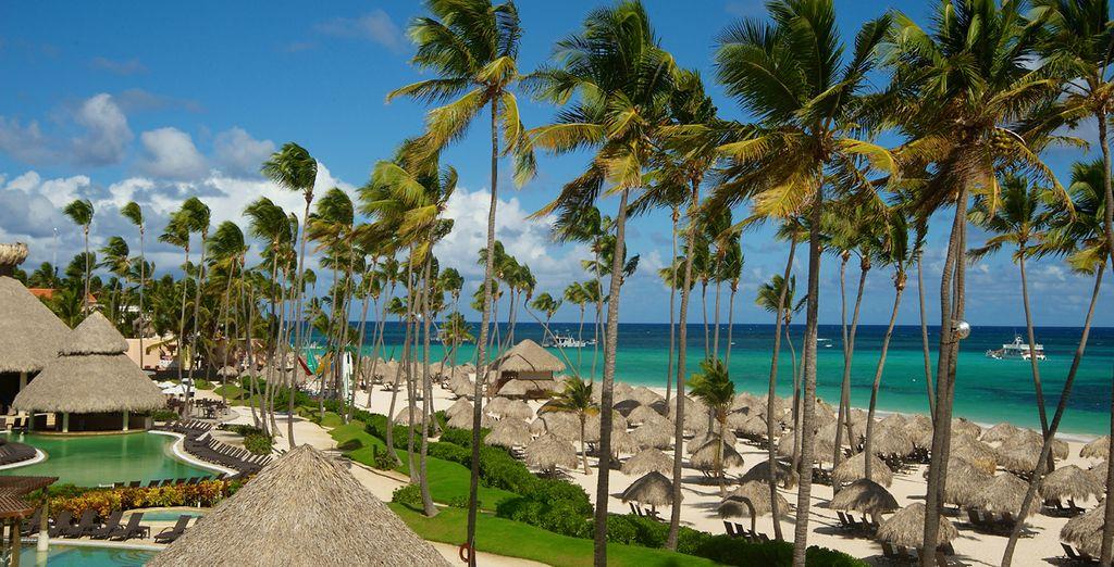 Ubicado sobre una playa de arena blanca con palmeras y con vista al Mar Caribe