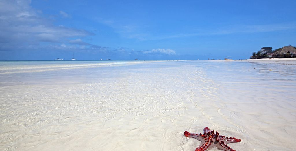 Kilómetros de playas de arena blanca