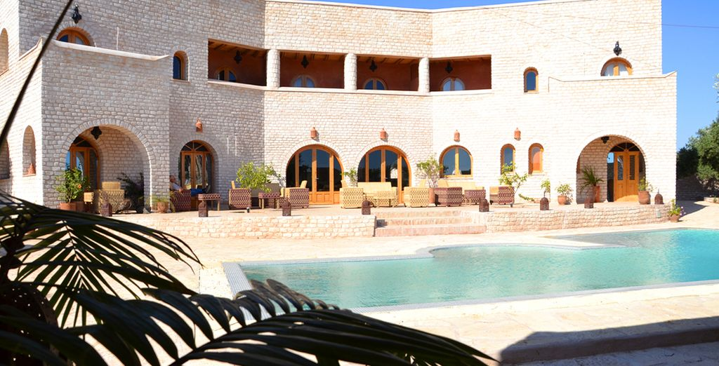 Relájese en una piscina rodeada de palmeras