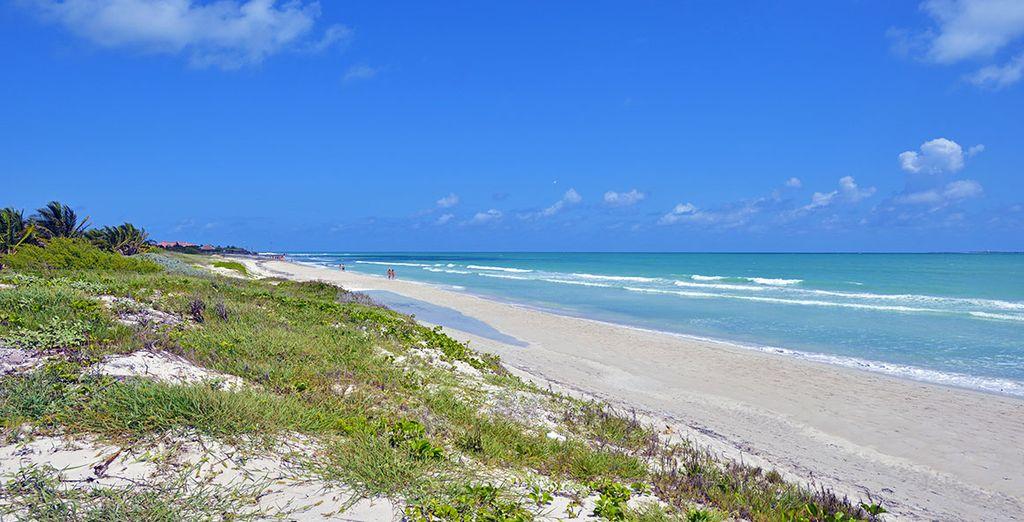Donnant sur une marina et une plage de sable blanc