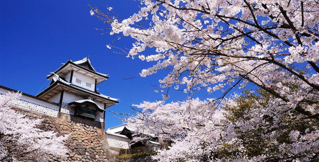 Séjour authentique au Japon - 9,12 ou 15 nuits