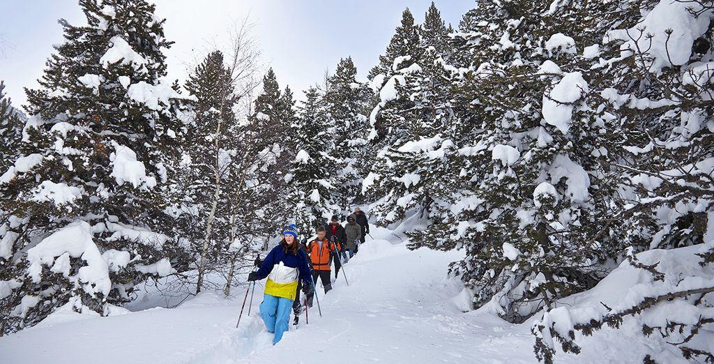 Au programme : ski, randonnée en raquettes