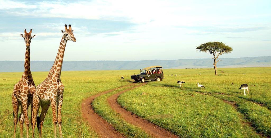 Le Kenya avec Voyage Prive