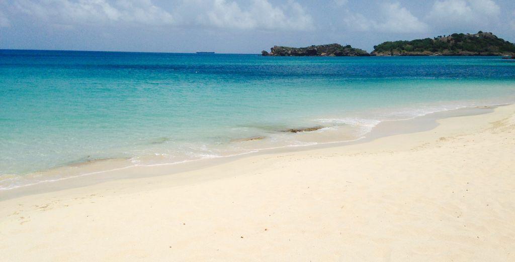 Alors, cap sur Antigua ?