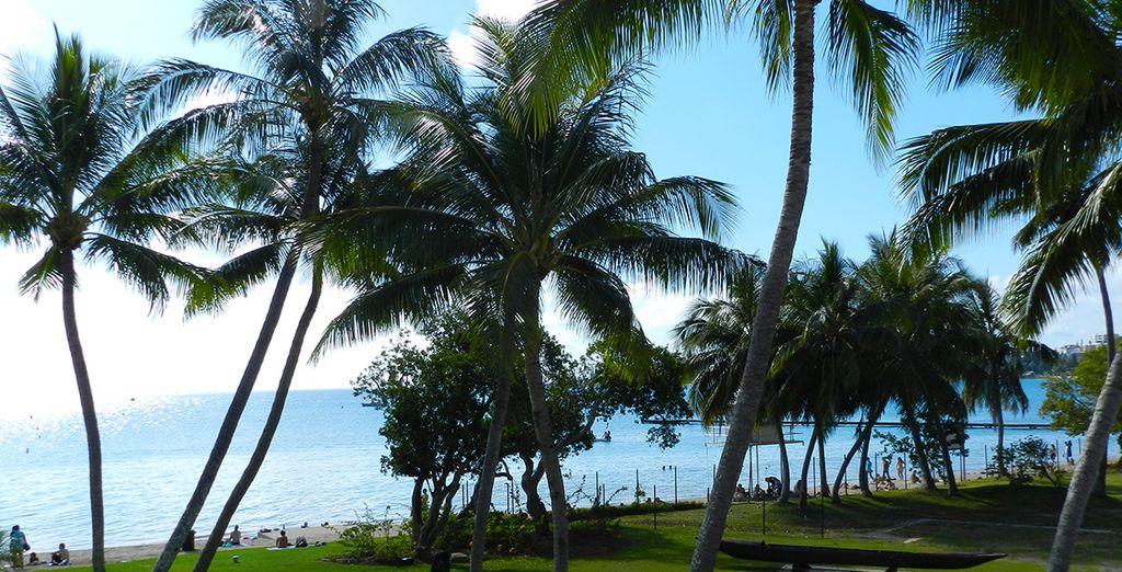 Vous débuterez votre séjour sur les rives de Nouméa